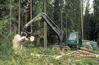 logger removing timber from forest